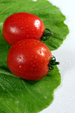 Fresh red tomatoes on lettuce Stock Photo
