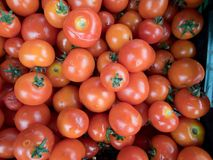 Fresh red tomatoes at a market. Many fresh red tomatoes at a market stock photo