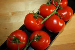 Fresh, red tomatoes royalty free stock photography