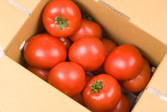 Fresh red tomatoes in paper box Royalty Free Stock Images