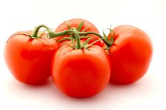 Fresh Red Tomatoes With Stem Stock Photography