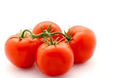 Fresh Red Tomatoes With Stem Royalty Free Stock Photos