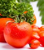 Fresh red tomatoes with water drops and some salad. Fresh red tomatoes with water drops and salad stock photography