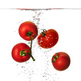 Fresh Red Tomatoes in Water  on White Background Stock Photo