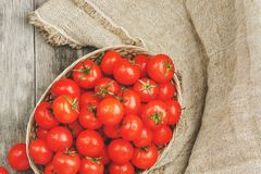 Fresh red tomatoes in a wicker basket on an old wooden table. Ripe and juicy cherry tomatoes with drops of moisture, gray wooden. Table, around a cloth of royalty free stock photo