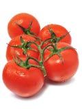 Fresh red tomatos Royalty Free Stock Photos