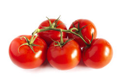 Fresh red tomatos  branch Stock Image