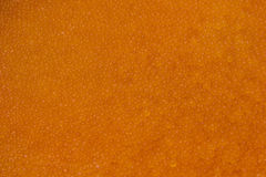 Fresh red trout caviar. Close-up background Stock Photos