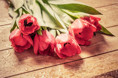 Fresh red tulip flowers bouquet on wood. Wet, morning dew. Stock Photo