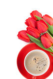 Fresh red tulips with coffee cup Royalty Free Stock Image