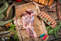 Fresh red venison meat with rosemary and pepper Stock Images