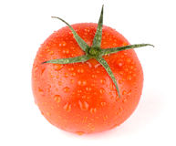 Fresh red wet tomato. On white background Stock Photo