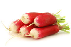 Fresh red and white radishes Stock Images
