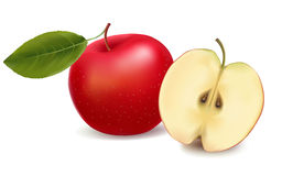 Fresh red whole apple and a half apple. Stock Image