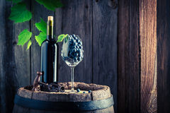 Fresh red wine in bottle and grapes in glass. On old wooden barrel Royalty Free Stock Photo