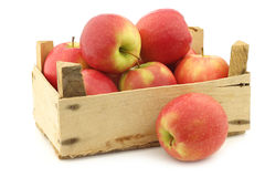 Fresh red and yellow apples Stock Images