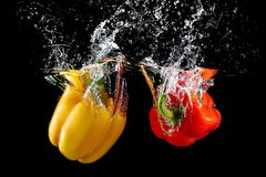 Bell pepper in water with splash. Fresh red and yellow bell pepper in water with splash on black background stock photo