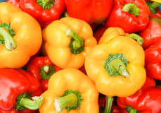 Fresh red and yellow bellpeppers Royalty Free Stock Photos