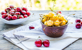 Fresh red and yellow cherry in a plate,healthy snack, summer, se Royalty Free Stock Photos