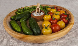 Fresh red and yellow cherry tomatoes and cucumbers with salt shaker on wooden tray in a rustic style. Stock Photos