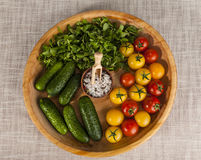 Fresh red and yellow cherry tomatoes and cucumbers with salt shaker on wooden tray in a rustic style. Royalty Free Stock Image