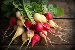 Fresh red and yellow radishes on dark rustic wooden background. Top view Royalty Free Stock Image