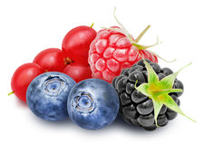 Fresh redcurrant, blackberry, raspberry, blueberry berries. Fresh ripe redcurrant, blackberry, raspberry, blueberry berries isolated on white background stock photos