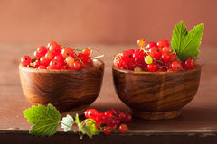Fresh redcurrant in cups over rustic wooden background Royalty Free Stock Photography
