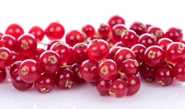 Fresh redcurrants Royalty Free Stock Image