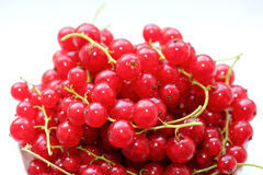 Fresh Redcurrants Stock Photo