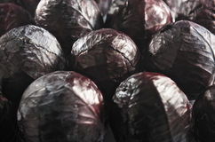 Fresh reds cabbages background Royalty Free Stock Images