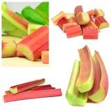 Fresh Rhubarb Stock Photos