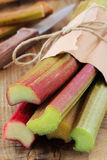 Fresh rhubarb stalks Stock Photography