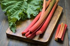 Fresh rhubarb on table royalty free stock photography