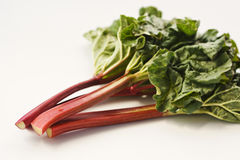 Fresh rhubarb Royalty Free Stock Image