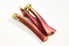 Fresh rhubarb Stock Photos