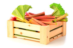 Fresh rhubarb in wooden crate. Fresh picked rhubarb in wooden crate on white background Royalty Free Stock Photos