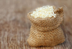 Fresh rice Royalty Free Stock Images