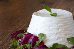 Fresh ricotta with basil leaf Stock Photo