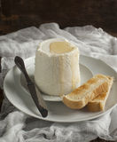 Fresh ricotta cheese with honey and toasts Royalty Free Stock Images