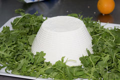 Fresh ricotta of sheep Royalty Free Stock Images