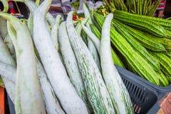 Fresh ridged gourd luffa. Kuala Lumpur. Malaysia Stock Images