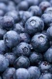 Fresh Rinsed Blueberries Royalty Free Stock Photo