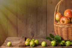 Fresh ripe apples in basket on vintage wood table Royalty Free Stock Photography