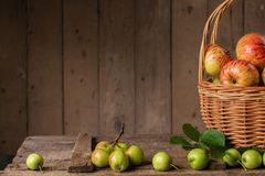 Fresh ripe apples in basket on vintage wood table Stock Images