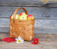 Fresh ripe apples in a basket. Royalty Free Stock Photography