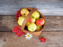 Fresh ripe apples in a basket. Stock Photo