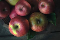 Fresh ripe apples on a wooden background. Autumn still life. Stock Images