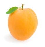 Fresh ripe apricot Royalty Free Stock Image