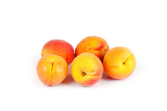 Fresh ripe apricot Stock Images
